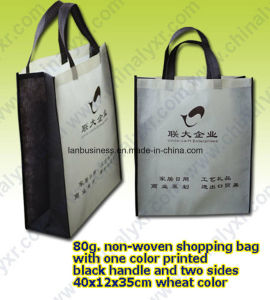 Fold and Portable Shopper Bag with Two Black Handle pictures & photos