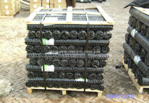 Poultry Iron Wire Mesh/Galvanized Hexagonal Iron Wire Netting pictures & photos