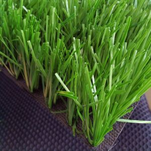 50mm Hot Sale Sports Artificial Synthetic Grass for Football Fields
