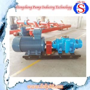 W. V Multi-Phase Heavy Oil Double Screw Pump with SGS pictures & photos