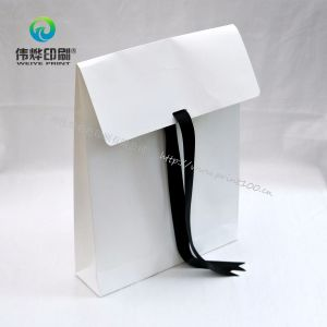 2017 New Design Fashion Style Paper Printing Gift Bag pictures & photos