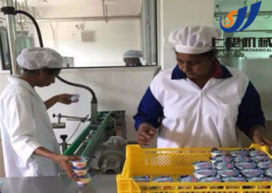 Drinking Yoghurt Production Line/Cup Yoghurt Production Line pictures & photos
