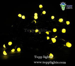 220V/110V LED Blister String Light pictures & photos