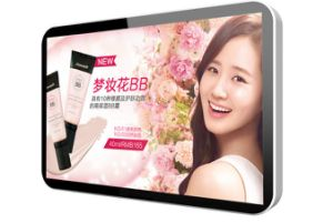 17 Inch LCD Display Media Player pictures & photos