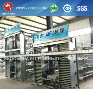 Top Quality Full Automatic Poultry Equipment for Poultry Farming pictures & photos