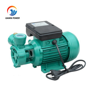 dB Electric Clean Water Pump pictures & photos