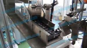 Automatic Plastic Tube Filler Sealer (TFS-100A) pictures & photos