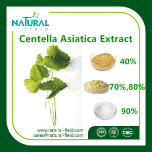 Centella Asiatica Extract Raw Material Gotu Kola Extract in Cosmetic pictures & photos
