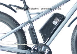 Bicicletta Elettrica Big Power 26 Inch Fat Electric Bicycle with Lithium Battery Beach Cruiser pictures & photos