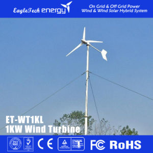 1kw Wind Power System Wind Turbine for Home