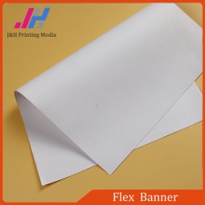 PVC Backlit Flex Banner of Raw Materials pictures & photos