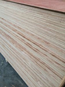 Okume Plywood for Yacht/Boat Building pictures & photos