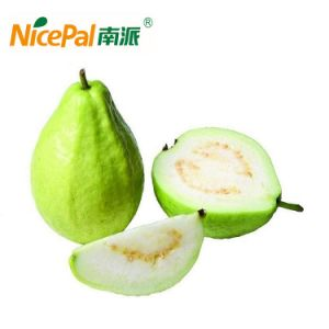 Natural Spray Dried Guava Fruit Juice Powder pictures & photos