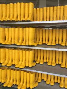 Yellow PVC Wellington Boots with Steel Toe Safety Rain Boots pictures & photos
