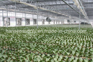 Greenhouse Roof Wall Mounted Exhaust Fan Axial Fan 54′′fan pictures & photos
