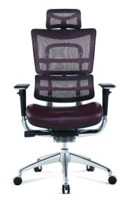 Executive Big Boss Office Chairs pictures & photos