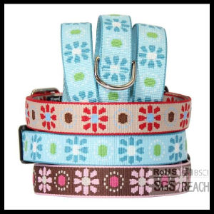 Most Competitive Embroidered Woven Pet Cat Dog Collar pictures & photos