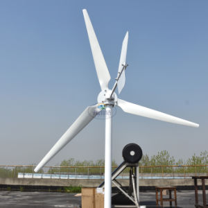 1000W Wind Turbine Generator 48V 50Hz with Low Start up Wind Speed pictures & photos