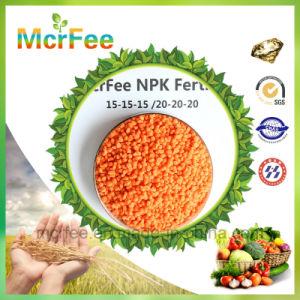 Manufacture Water Soluble Compound Fertilizer NPK 20 20 20 pictures & photos