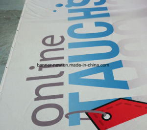 Shiny Full Color Polyester Fabric Banners (SS-SF-91) pictures & photos