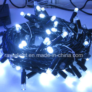 LED Holiday String Light for Garden Decoration pictures & photos