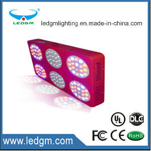 20117 Top 10 Hot Sale 160W-170W LED Chips Grow LED Light, LED Grow Light Full Spectrum From Shenzhen China pictures & photos