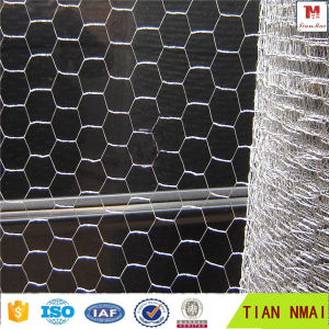 Galvanized Hexagonal Wire Mesh From Anping Tian Mai Factory pictures & photos