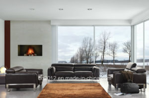 Hot Selling Top Leather Sofa (SBO-3946) pictures & photos