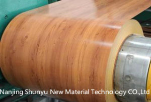 Prepainted Steel Coil /Color Coated Steel Coil PPGI/ PPGL pictures & photos