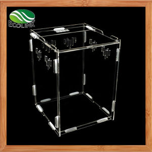Transparent Acrylic Reptile Terrarium Habitat for Juvenile and Small Arboreal Tarantulas Chameleon Snails or Other Larval Reptiles pictures & photos
