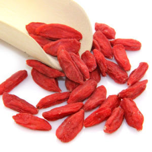 Weight Loss Organic Dried Goji Berries-Chinese Traditional Medicine pictures & photos
