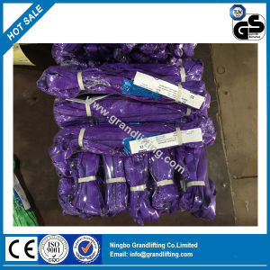 Individual Polybag Packing En1492-2 Round Lifting Sling pictures & photos