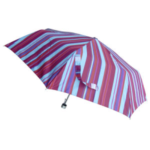 Beautiful Stripe Design Manual Open Pocket Foldable Umbrella (53S449)