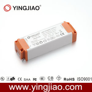 20W Constant Current LED Driver with CE pictures & photos