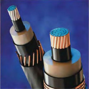 6/10kv Flame Retardant Copper Wire Screened Hv Power Cable N2xsh pictures & photos