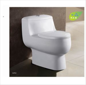 Siphonic One-Piece Wc Closet Toilet CE-T216 pictures & photos