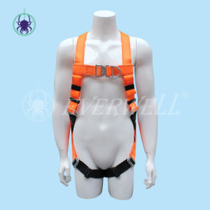Safety Harness with Five-Point Fixed Mode (EW3020H)