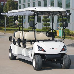 Ce Certificated 6 Seats Golf Cart Dg-C6 with Customise Service pictures & photos