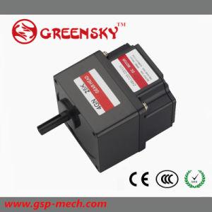 24V/36V/48V Electrical DC Geared Brushless BLDC Motor pictures & photos