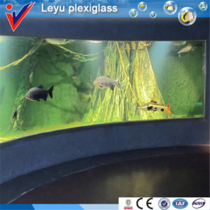 Modern and Luxury Acrylic Fish Tank Aquariums pictures & photos
