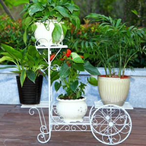 Wrought Iron Flower Stand for Home and Garden Decoration pictures & photos