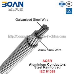 ACSR, Aluminium Conductors Steel Reinforced (IEC 61089) pictures & photos