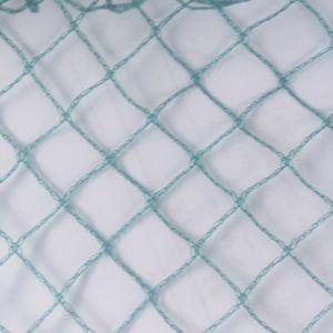 100% Virgin HDPE Anti-Bird Netting pictures & photos