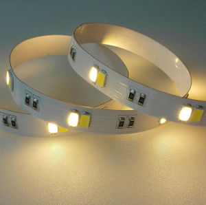 Samsung 5630 LED Strip with Color Temperature (CCT) Dimming pictures & photos