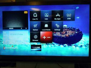 Rich Sources Program Built in Smart TV Receiver Ipremium I9 pictures & photos