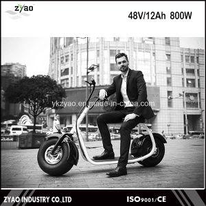 China Factory Wholesale Citycoco Chinese Cheap Adult Electric Motorcycle E-Scooter pictures & photos