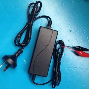 Customized 3V to 16.8V Universal Smart Charger pictures & photos