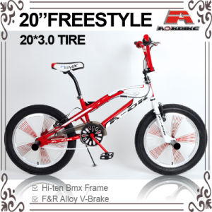 Fat Tire 140h Spoke BMX Freestyle Bicycle (ABS-2053S) pictures & photos