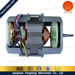 AC Series Excitation Motor for Blender pictures & photos