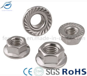 Stainless Steel 201 304 316 Hex Flange Nut